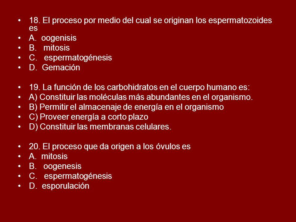 18. El proceso por medio del cual se originan los espermatozoides es A. oogenisis B. mitosis C. espermatogénesis D. Gemación 19. La función de los car