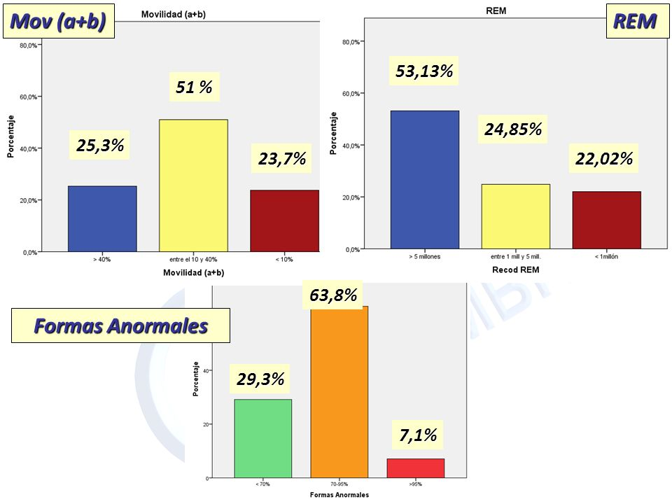 REM Mov (a+b) 53,13% 24,85% 22,02% 51 % 23,7% 25,3% REM 7,1% Formas Anormales 63,8% 29,3%