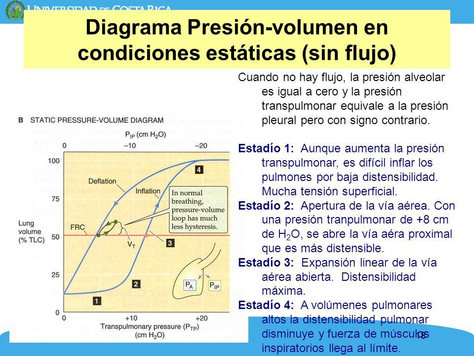 18 Diagrama Presión-volumen en condiciones estáticas (sin flujo) Cuando no hay flujo, la presión alveolar es igual a cero y la presión transpulmonar e