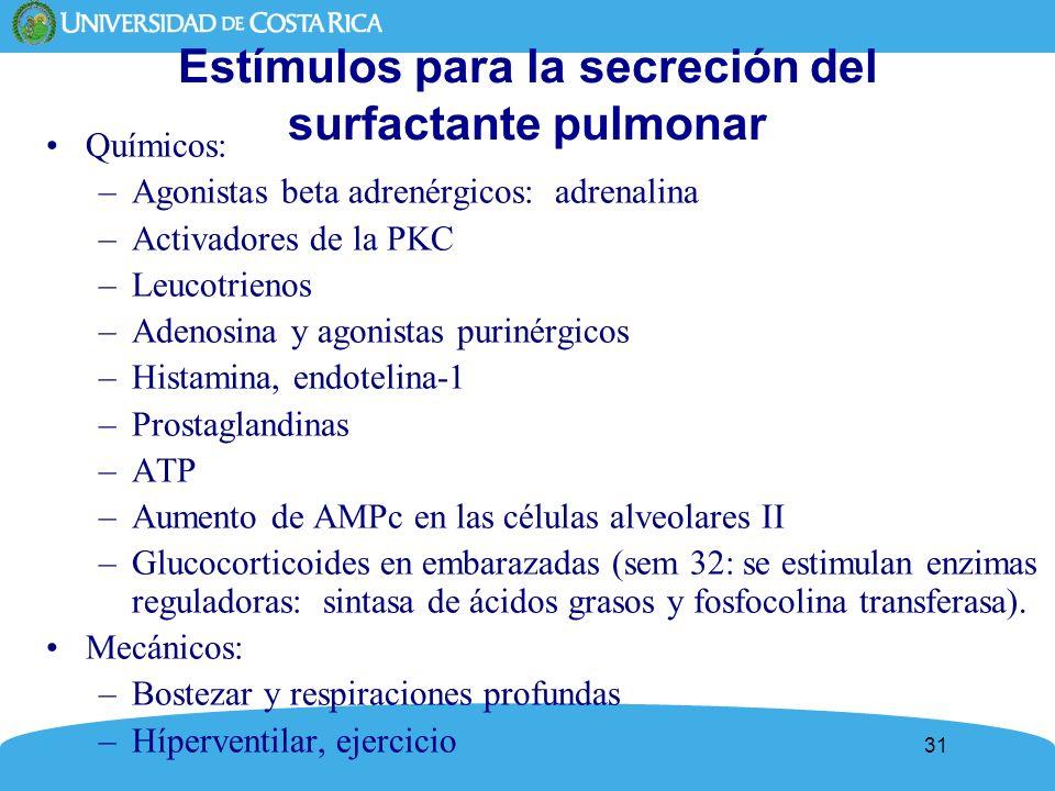 31 Estímulos para la secreción del surfactante pulmonar Químicos: –Agonistas beta adrenérgicos: adrenalina –Activadores de la PKC –Leucotrienos –Adeno