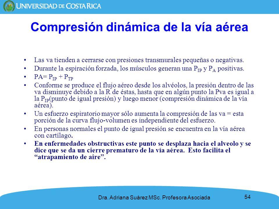 54 Compresión dinámica de la vía aérea Las va tienden a cerrarse con presiones transmurales pequeñas o negativas. Durante la espiración forzada, los m