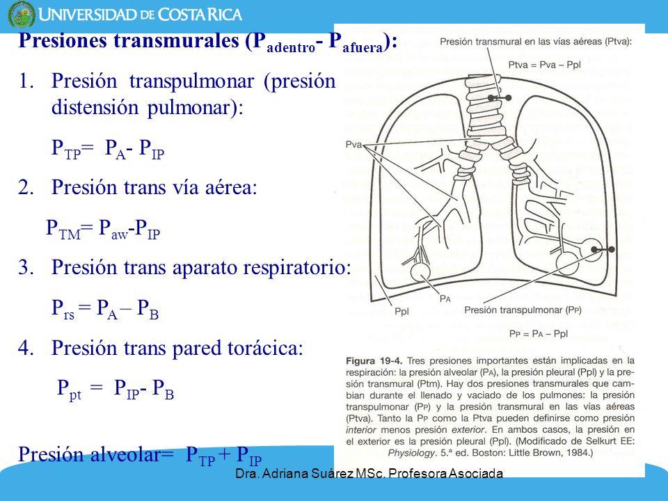 6 Presiones transmurales (P adentro - P afuera ): 1.Presión transpulmonar (presión distensión pulmonar): P TP = P A - P IP 2.Presión trans vía aérea: