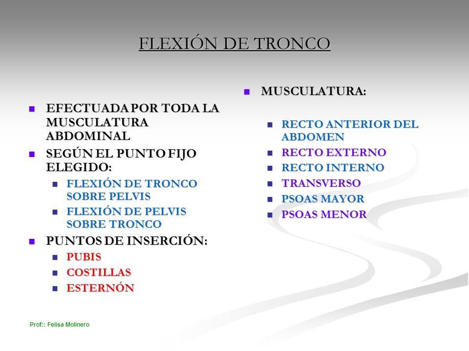Prof:: Felisa Molinero FLEXIÓN DE TRONCO EFECTUADA POR TODA LA MUSCULATURA ABDOMINAL EFECTUADA POR TODA LA MUSCULATURA ABDOMINAL SEGÚN EL PUNTO FIJO E