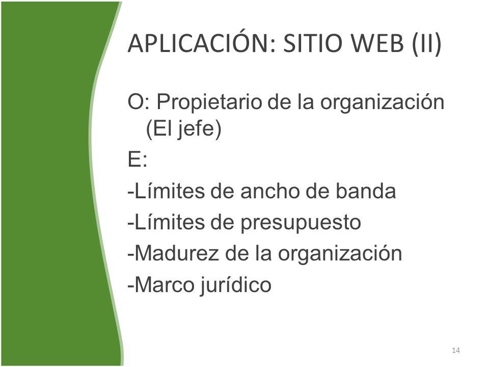 APLICACIÓN: SITIO WEB (II) O: Propietario de la organización (El jefe) E: -Límites de ancho de banda -Límites de presupuesto -Madurez de la organizaci