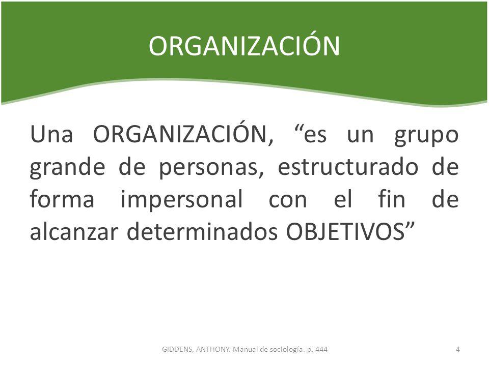 ORGANIZACIÓN Una ORGANIZACIÓN, es un grupo grande de personas, estructurado de forma impersonal con el fin de alcanzar determinados OBJETIVOS 4GIDDENS