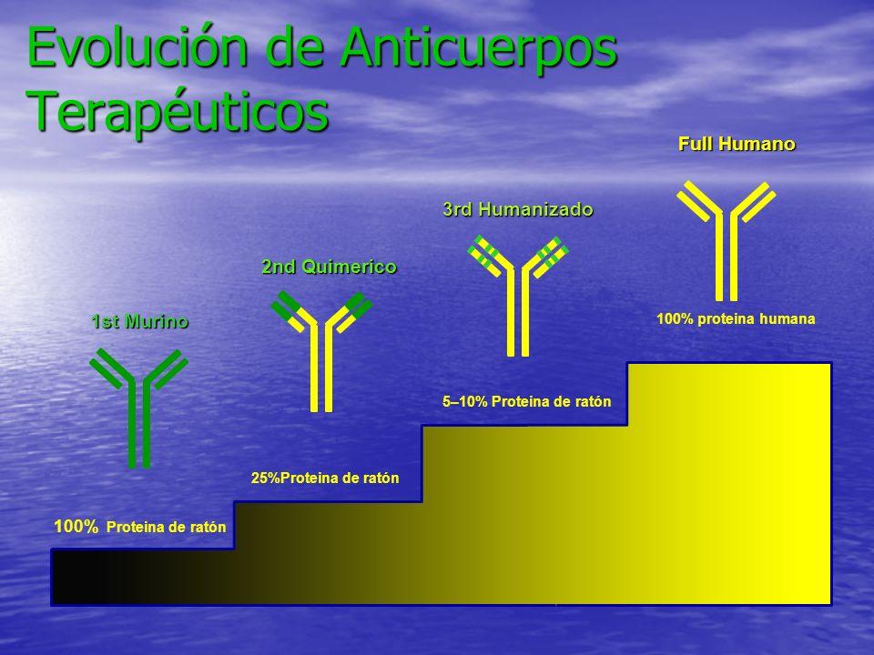 Evolución de Anticuerpos Terapéuticos Adalimumab (D2E7) Full Humano 1st Murino 2nd Quimerico 3rd Humanizado 5–10% Proteina de ratón 100% proteina huma