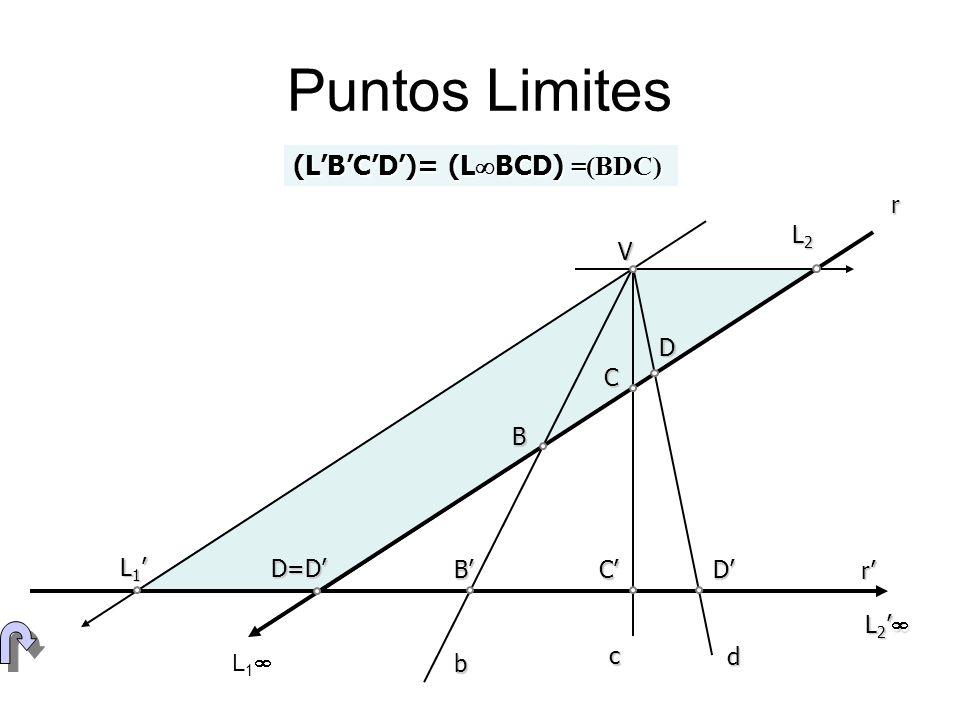 Puntos Limites (LBCD)= (L BCD) =(BDC) V D=D B C r b c d D L 1 L 1 BCD r L 1 L 2 L 2 L2L2L2L2