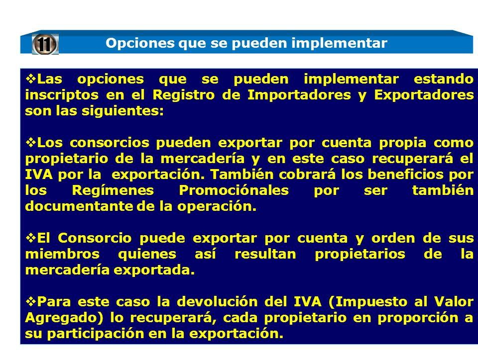 Las opciones que se pueden implementar estando inscriptos en el Registro de Importadores y Exportadores son las siguientes: Los consorcios pueden expo