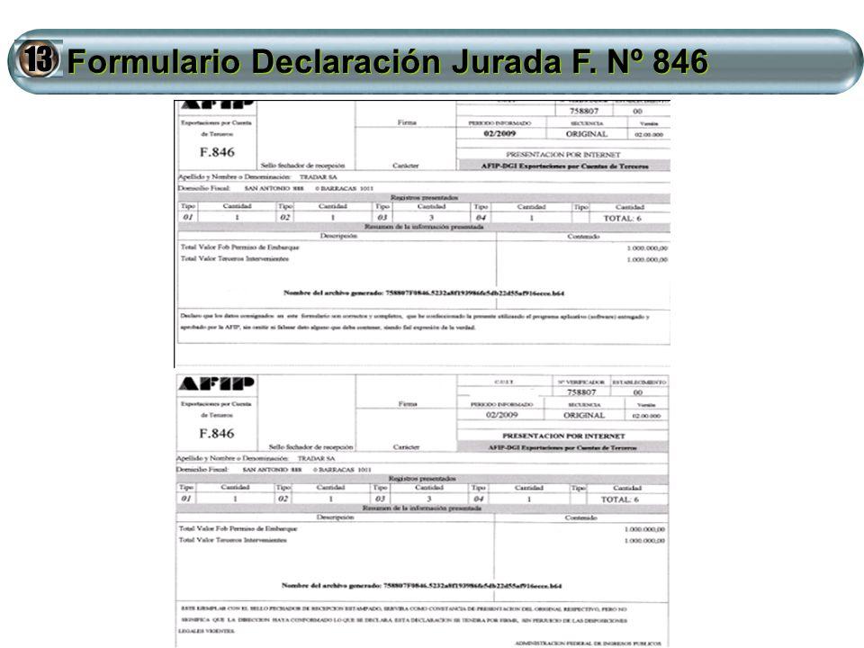 Formulario Declaración Jurada F. Nº 846 Formulario Declaración Jurada F. Nº 846 13