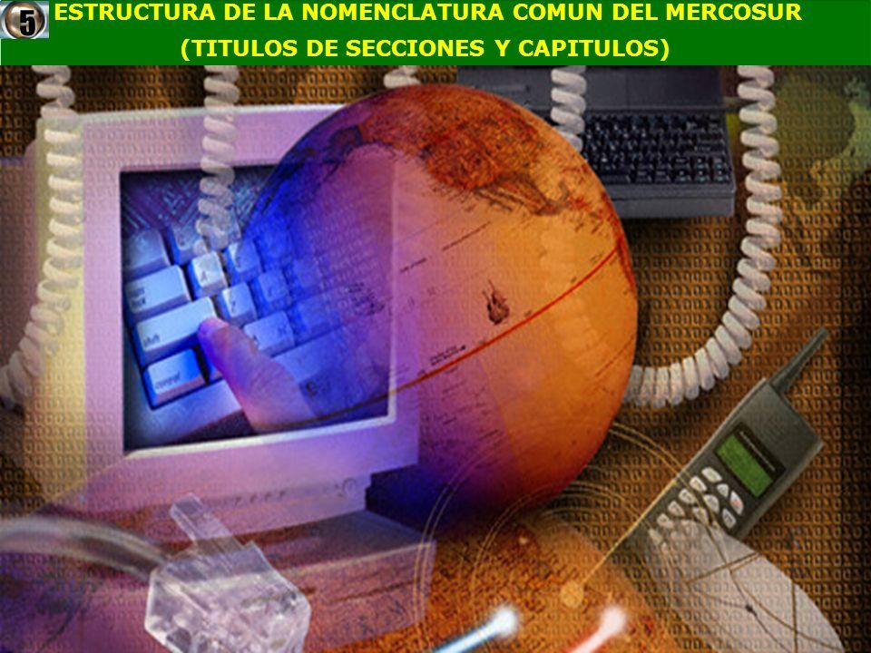 ESTRUCTURA DE LA NOMENCLATURA COMUN DEL MERCOSUR (TITULOS DE SECCIONES Y CAPITULOS)5