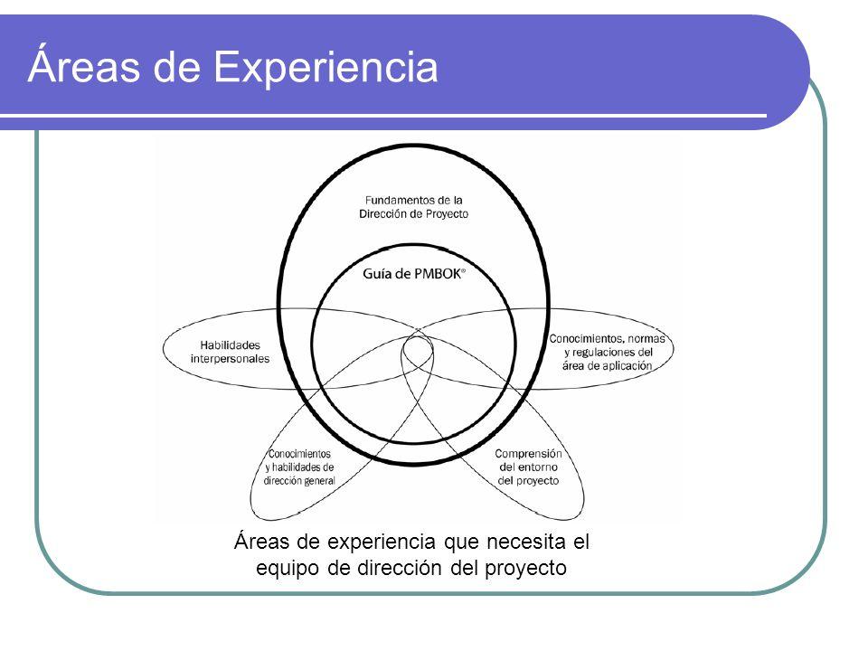 Áreas de Experiencia Áreas de experiencia que necesita el equipo de dirección del proyecto