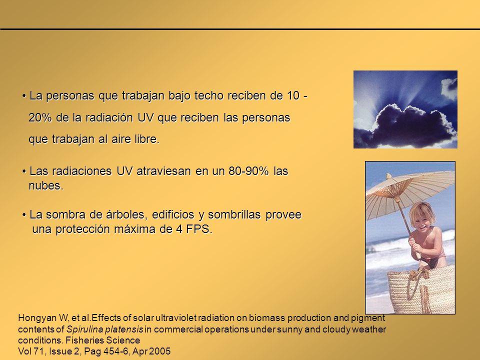 La personas que trabajan bajo techo reciben de 10 - La personas que trabajan bajo techo reciben de 10 - 20% de la radiación UV que reciben las persona