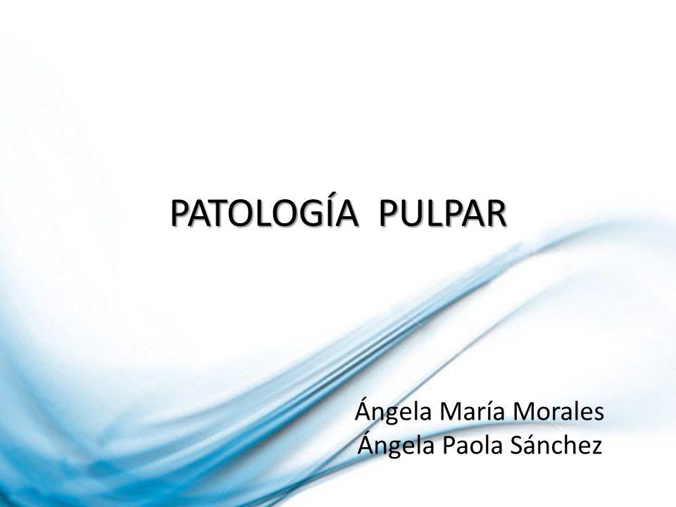 PATOLOGÍA PULPAR Ángela María Morales Ángela Paola Sánchez