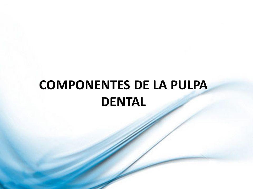 TRATAMIENTO: No requiere tratamiento endodontico Restauración en coronas Carilla estéticas DEGENERACION PULPAR CALCIFICANTE PROGRESIVA