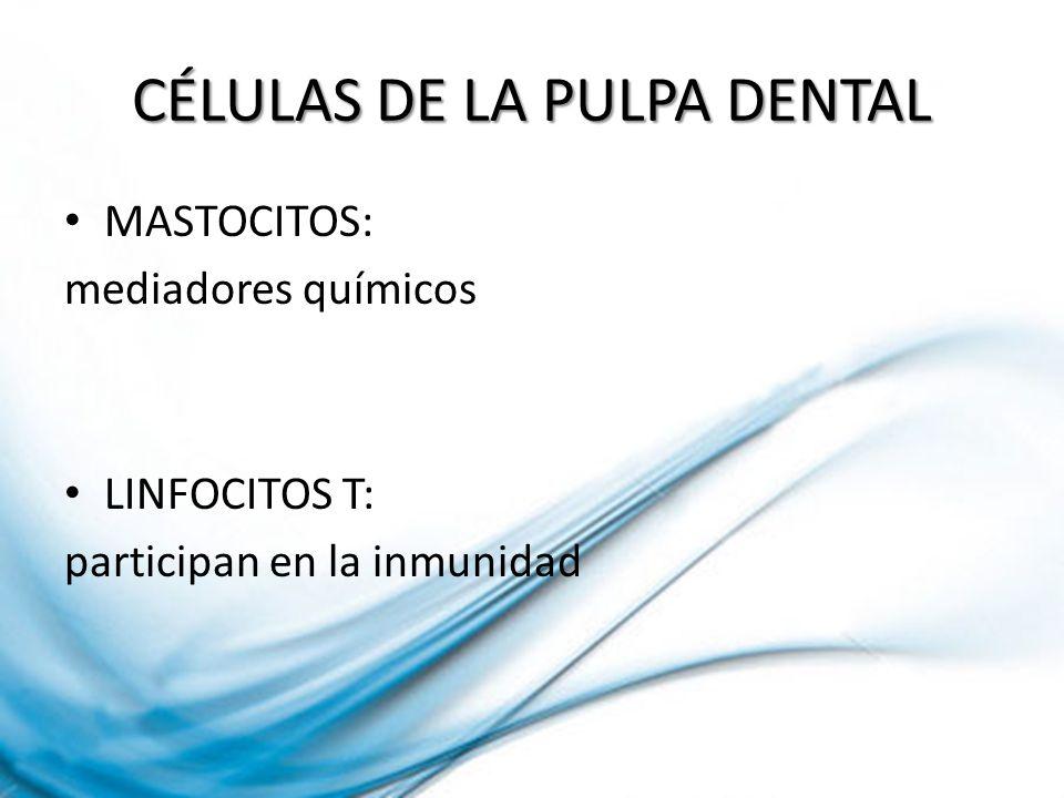 Consiste en la fractura incompleta de un diente cuya pulpa conserva la vitalidad.