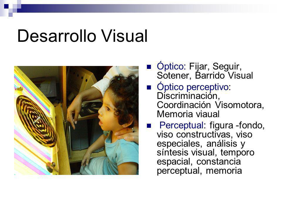 CONCLUSIONES Los niños pueden mejorar su funcionamiento visual con terapias visuales, que prevengan las secuelas como los problemas de aprendizaje.