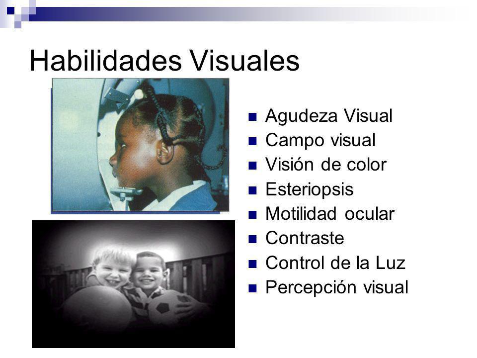 Alteraciones Visuales que Interfieren en el Proceso de Aprendizaje Alteraciones Visuales : Patologías oculares mas frecuentes en los niños Educación Inclusión educativa Aprendizaje: Baja Visión y Disfunción Visual