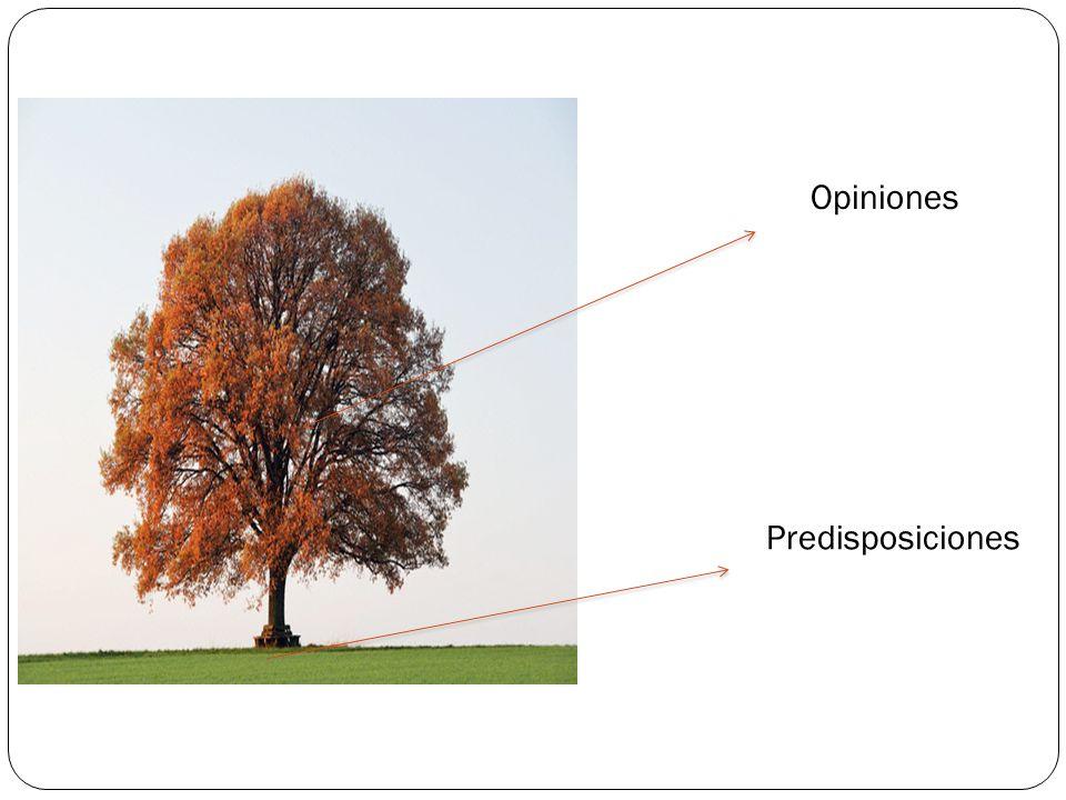 (2)Predisposicion es 2a Actitudes 2b Valores 2c Esquemas Cognitivos (1) Opiniones