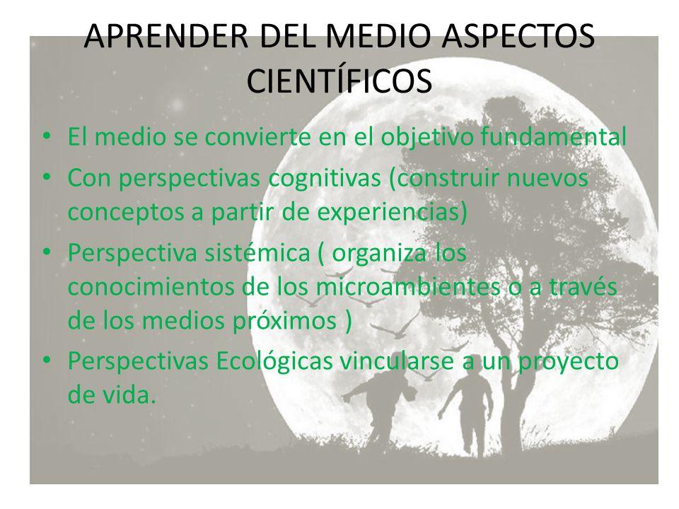 El medio se convierte en el objetivo fundamental Con perspectivas cognitivas (construir nuevos conceptos a partir de experiencias) Perspectiva sistémi