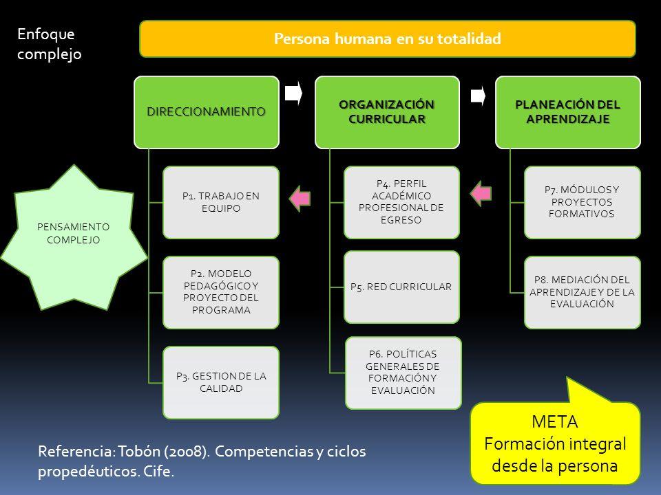 DIRECCIONAMIENTO P1. TRABAJO EN EQUIPO P2. MODELO PEDAGÓGICO Y PROYECTO DEL PROGRAMA P3. GESTION DE LA CALIDAD ORGANIZACIÓN CURRICULAR P4. PERFIL ACAD