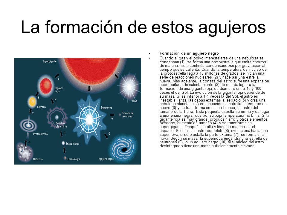 La formación de estos agujeros Formación de un agujero negro Cuando el gas y el polvo interestelares de una nebulosa se condensan (1), se forma una pr