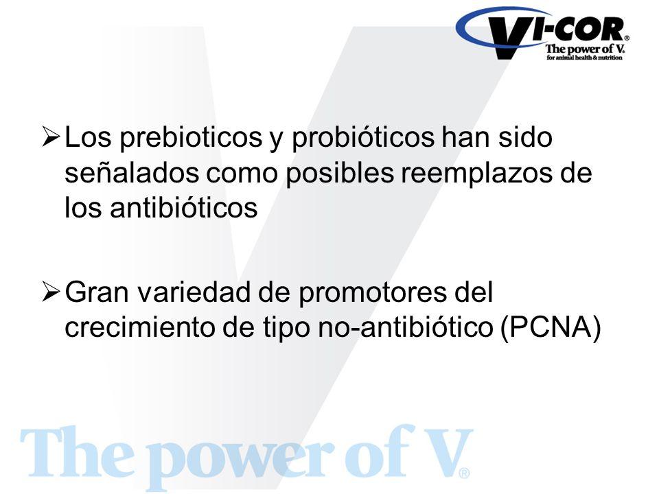 Los prebioticos y probióticos han sido señalados como posibles reemplazos de los antibióticos Gran variedad de promotores del crecimiento de tipo no-a