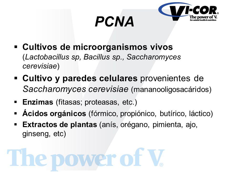 PCNA Cultivos de microorganismos vivos (Lactobacillus sp, Bacillus sp., Saccharomyces cerevisiae) Cultivo y paredes celulares provenientes de Saccharo