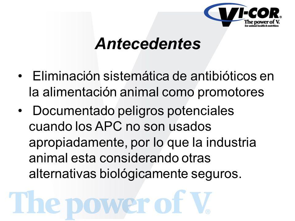 Antecedentes Eliminación sistemática de antibióticos en la alimentación animal como promotores Documentado peligros potenciales cuando los APC no son
