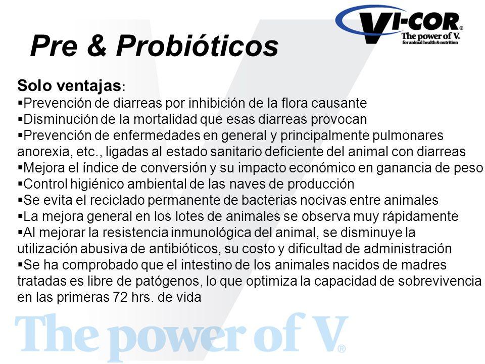 Pre & Probióticos Solo ventajas : Prevención de diarreas por inhibición de la flora causante Disminución de la mortalidad que esas diarreas provocan P