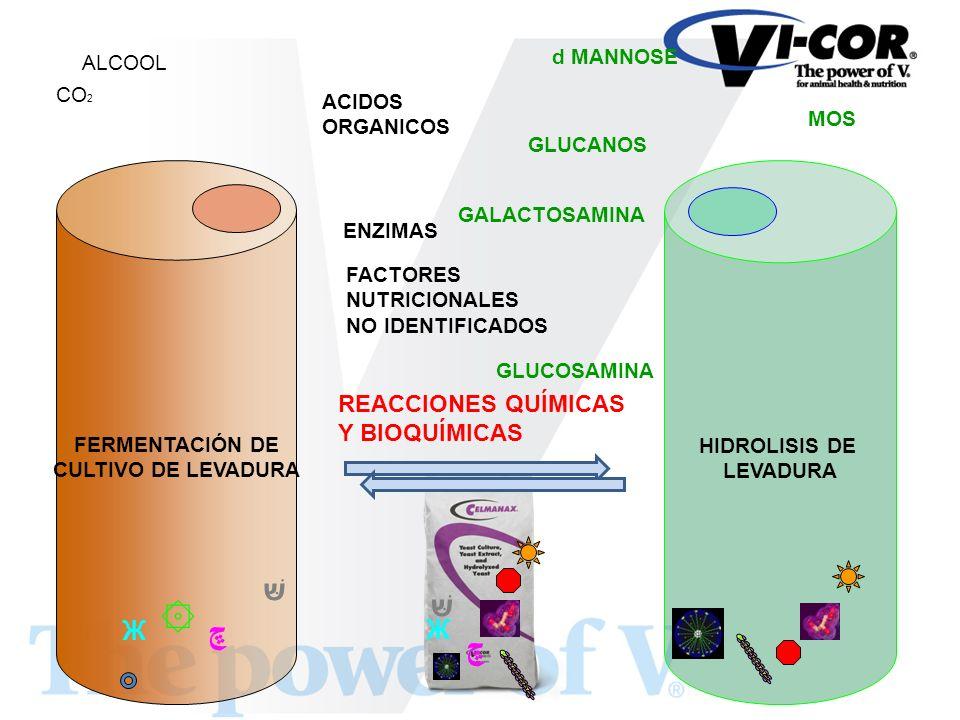 FERMENTACIÓN DE CULTIVO DE LEVADURA HIDROLISIS DE LEVADURA CO 2 ۞ ALCOOL Ж ACIDOS ORGANICOS ڇ ENZIMAS FACTORES NUTRICIONALES NO IDENTIFICADOS MOS d MA