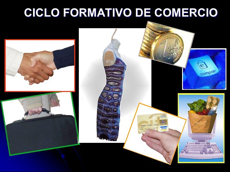 C. F. COMERCIO PRÁCTICAS EN EMPRESAS