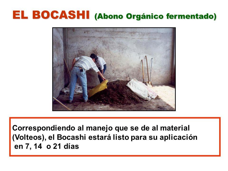 EL BOCASHI (Abono Orgánico fermentado) Correspondiendo al manejo que se de al material (Volteos), el Bocashi estará listo para su aplicación en 7, 14