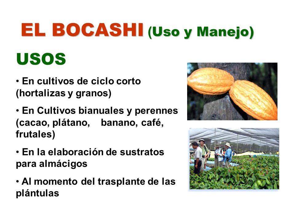 EL BOCASHI ( Uso y Manejo) USOS En cultivos de ciclo corto (hortalizas y granos) En Cultivos bianuales y perennes (cacao, plátano, banano, café, fruta