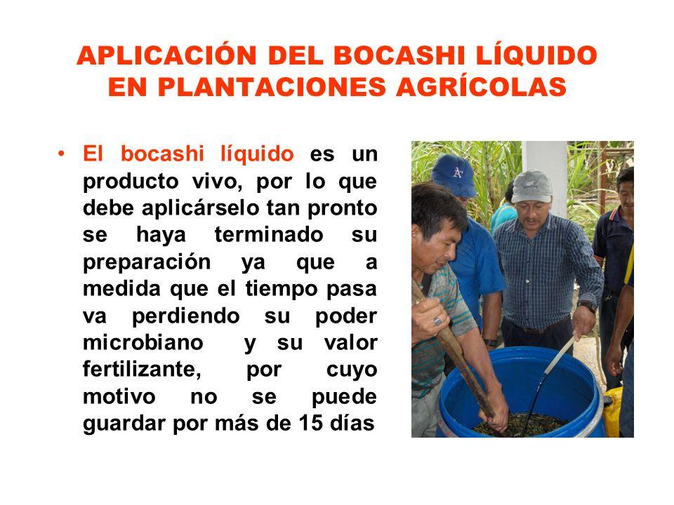 APLICACIÓN DEL BOCASHI LÍQUIDO EN PLANTACIONES AGRÍCOLAS El bocashi líquido es un producto vivo, por lo que debe aplicárselo tan pronto se haya termin
