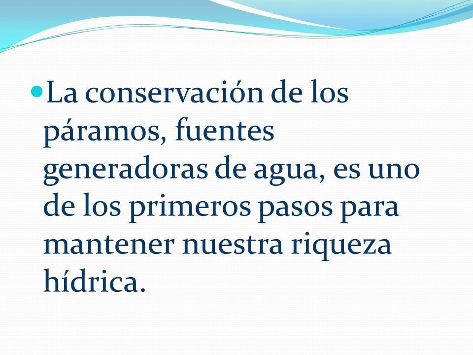 La conservación de los páramos, fuentes generadoras de agua, es uno de los primeros pasos para mantener nuestra riqueza hídrica.