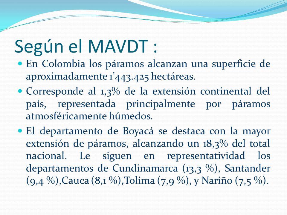 Según el MAVDT : En Colombia los páramos alcanzan una superficie de aproximadamente 1443.425 hectáreas. Corresponde al 1,3% de la extensión continenta