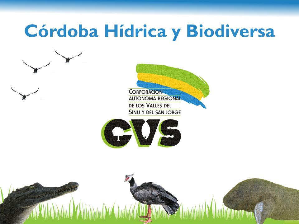 Córdoba Hídrica y Biodiversa
