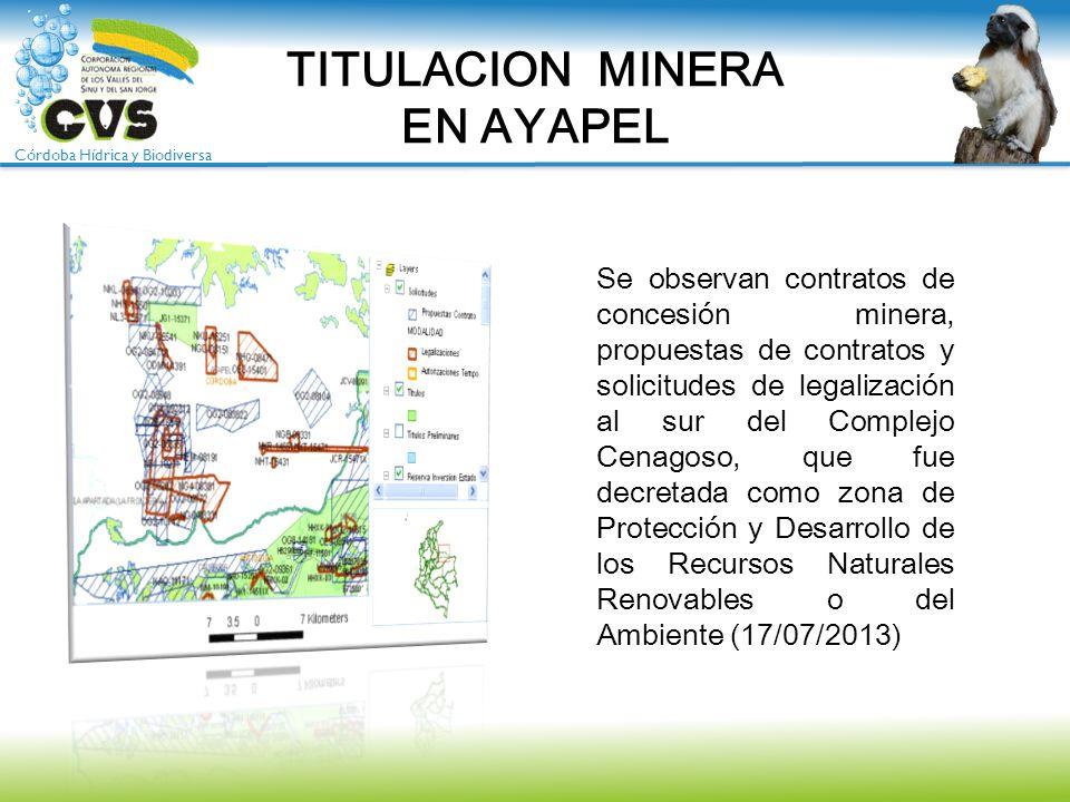 Córdoba Hídrica y Biodiversa TITULACION MINERA EN AYAPEL Se observan contratos de concesión minera, propuestas de contratos y solicitudes de legalizac