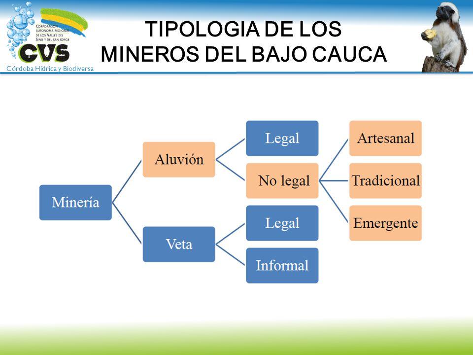 Córdoba Hídrica y Biodiversa TIPOLOGIA DE LOS MINEROS DEL BAJO CAUCA