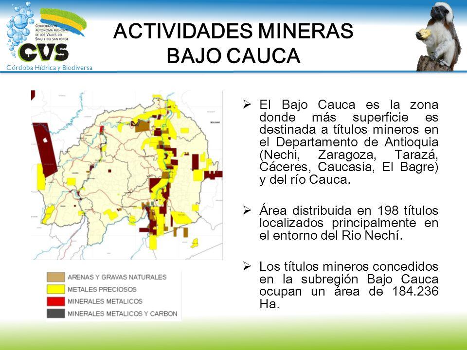 Córdoba Hídrica y Biodiversa ACTIVIDADES MINERAS BAJO CAUCA El Bajo Cauca es la zona donde más superficie es destinada a títulos mineros en el Departa