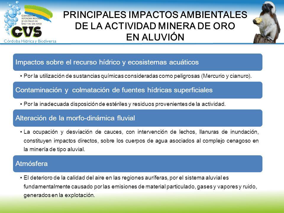 Córdoba Hídrica y Biodiversa PRINCIPALES IMPACTOS AMBIENTALES DE LA ACTIVIDAD MINERA DE ORO EN ALUVIÓN Impactos sobre el recurso hídrico y ecosistemas