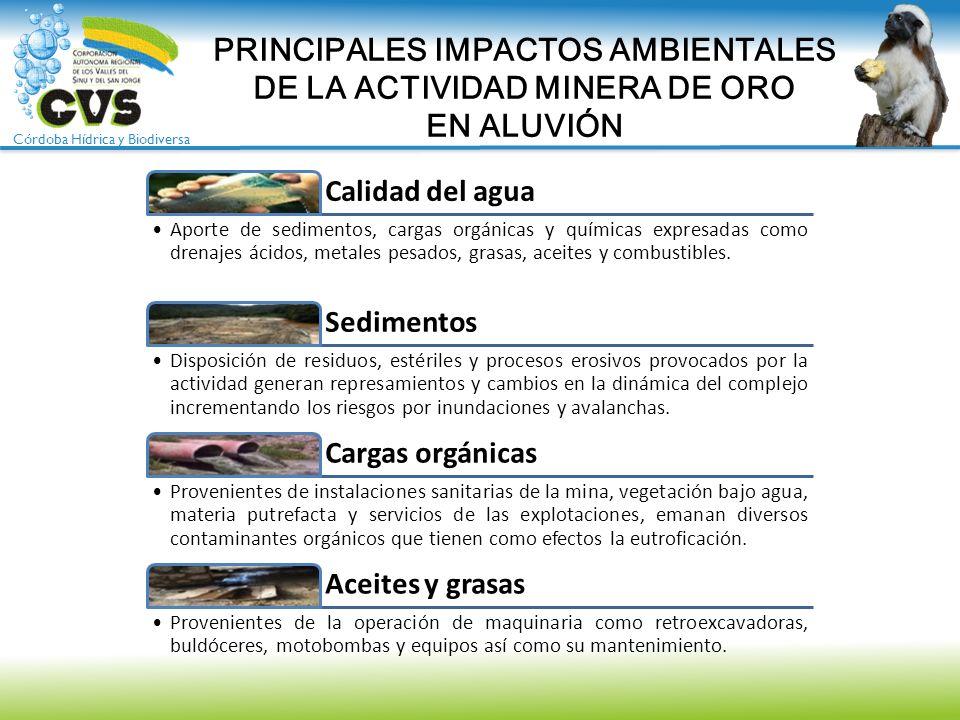 Córdoba Hídrica y Biodiversa PRINCIPALES IMPACTOS AMBIENTALES DE LA ACTIVIDAD MINERA DE ORO EN ALUVIÓN Calidad del agua Aporte de sedimentos, cargas o