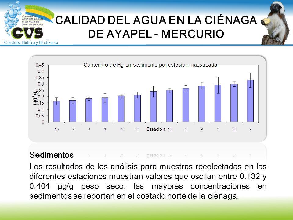 Córdoba Hídrica y Biodiversa Sedimentos Los resultados de los análisis para muestras recolectadas en las diferentes estaciones muestran valores que os
