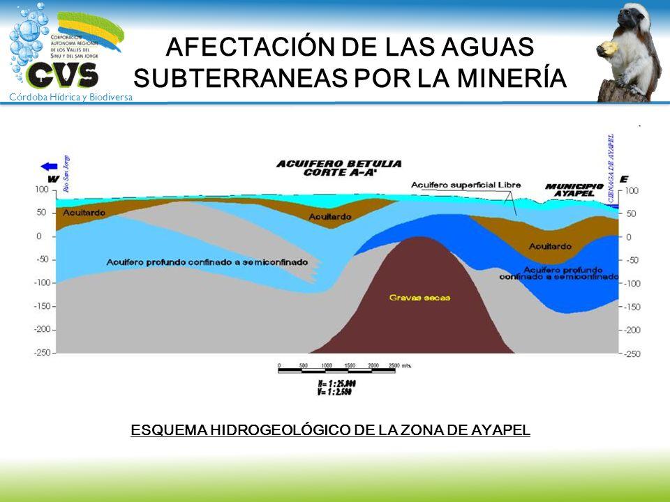Córdoba Hídrica y Biodiversa AFECTACIÓN DE LAS AGUAS SUBTERRANEAS POR LA MINERÍA ESQUEMA HIDROGEOLÓGICO DE LA ZONA DE AYAPEL