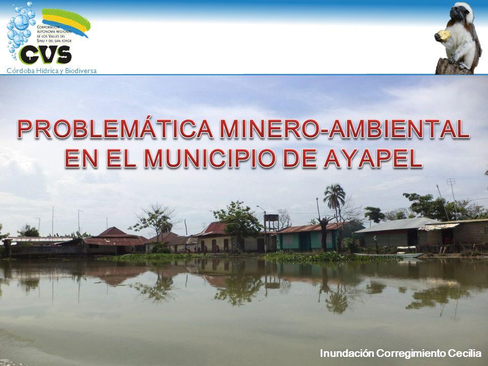 Córdoba Hídrica y Biodiversa AGENDA TEMÁTICA 1.PROBLEMÁTICA MINERO AMBIENTAL DEL COMPLEJO CENAGOSO DE AYAPEL 2.PROBLEMÁTICA DE INUNDACIÓN EN LA REGIÓN 3.IMPACTOS AMBIENTALES GENERADOS POR LA MINERIA (DE HECHO, LEGAL E ILEGAL) 4.GESTIONES DE LA CORPORACION EN EL TEMA MINERO AMBIENTAL