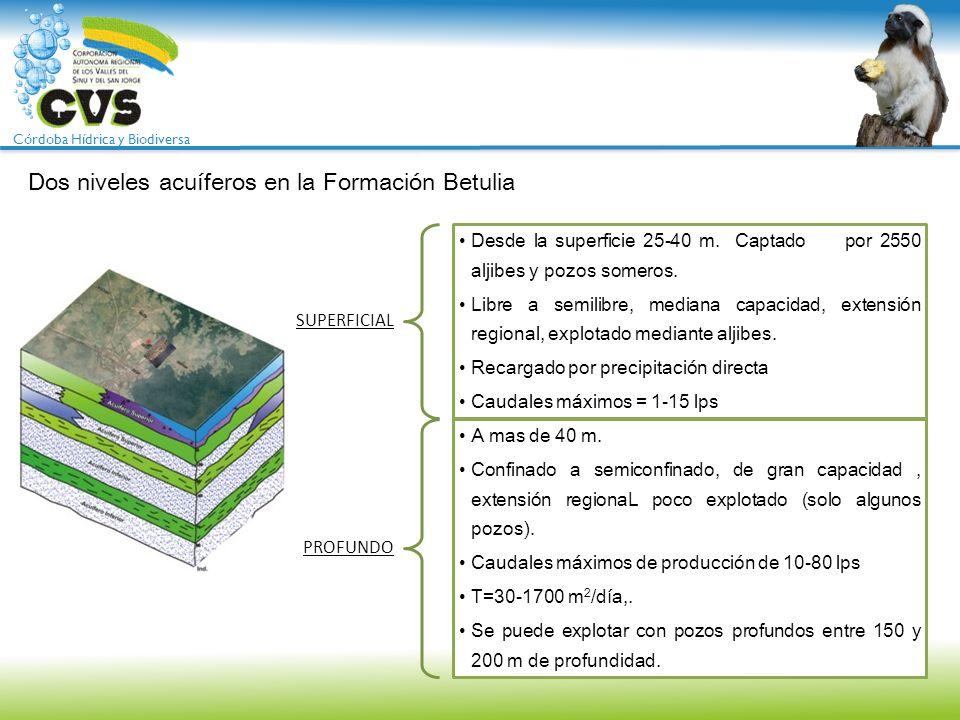 Córdoba Hídrica y Biodiversa Dos niveles acuíferos en la Formación Betulia SUPERFICIAL Desde la superficie 25-40 m. Captado por 2550 aljibes y pozos s