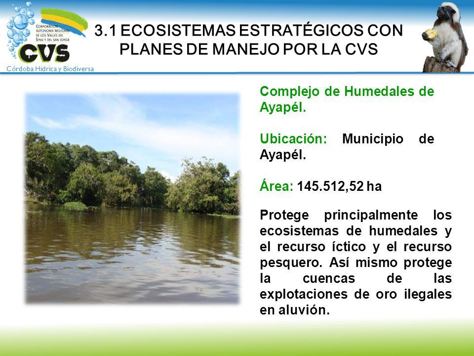 Córdoba Hídrica y Biodiversa Complejo de Humedales de Ayapél. Ubicación: Municipio de Ayapél. Área: 145.512,52 ha 3.1 ECOSISTEMAS ESTRATÉGICOS CON PLA