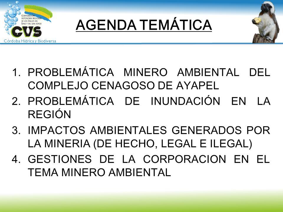 Córdoba Hídrica y Biodiversa AGENDA TEMÁTICA 1.PROBLEMÁTICA MINERO AMBIENTAL DEL COMPLEJO CENAGOSO DE AYAPEL 2.PROBLEMÁTICA DE INUNDACIÓN EN LA REGIÓN