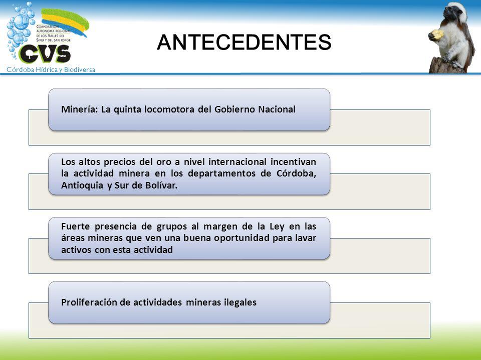 Córdoba Hídrica y Biodiversa PLAN DE ACCION RESOLUCIÓN 1.7082 MAYO 06 DE 2013 PLANES A LARGO PLAZO PROYECTOS POSTERIORES A LOS EJECUTADOS POR ENTES TERRITORIALES