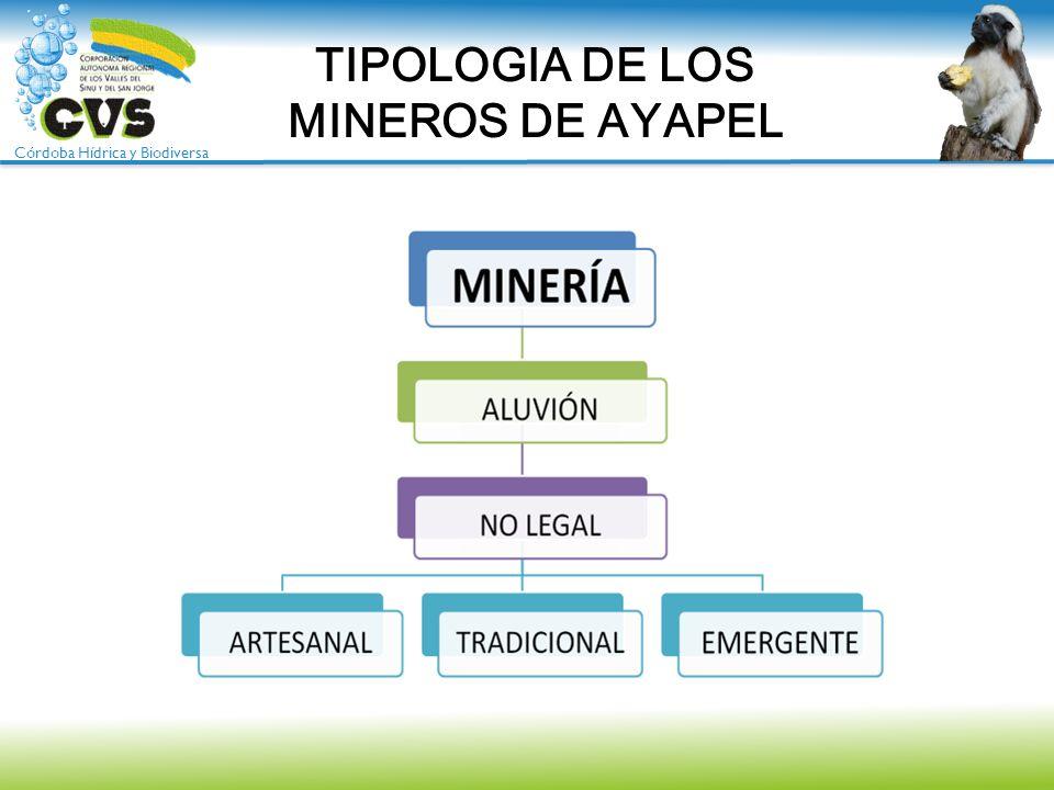 TIPOLOGIA DE LOS MINEROS DE AYAPEL
